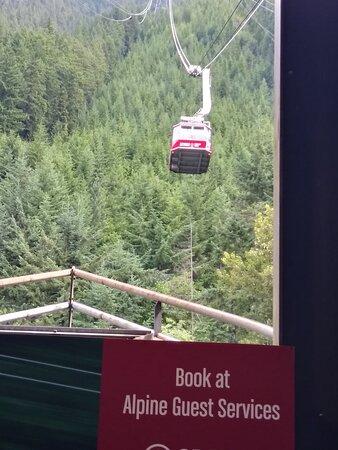 Vancouver Coast and Mountains, Canada: Grouse Mountain Canada