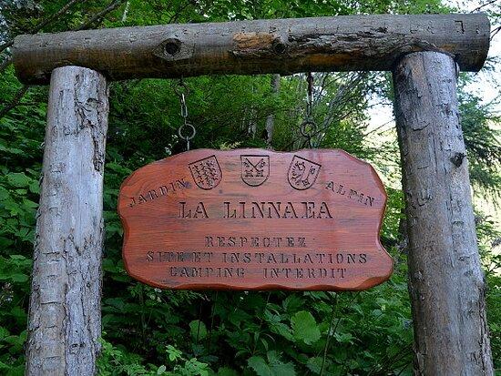 Jardin alpin La Linnaea