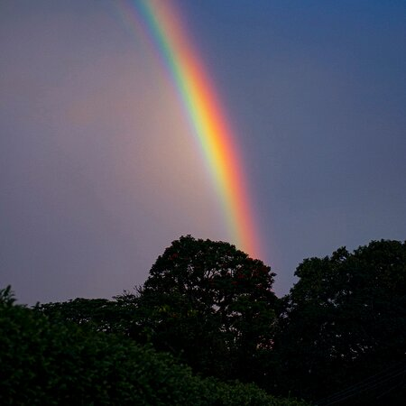 Vista do nosso Deck em um final de tarde com chuva e sol. Resultado? Esse arco-íris de encantar os olhos e o coração!