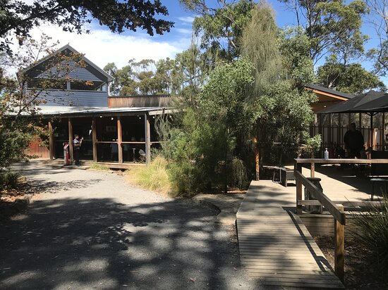 Bruny Island Cheese outdoors