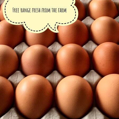 Eggs anyone