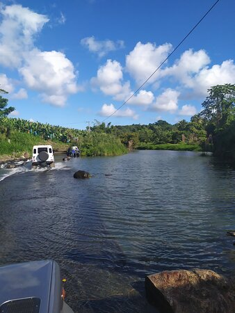Excursions 4X4 foret tropicale