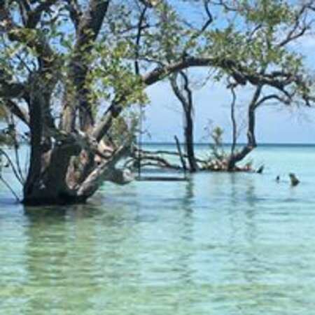 Explore the beautiful Lower Florida Keys