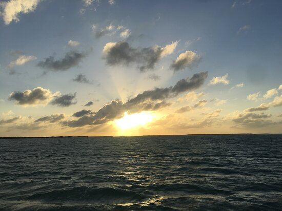 You haven't seen it all until you step off dry land & venture out on the waters of the Florida Keys