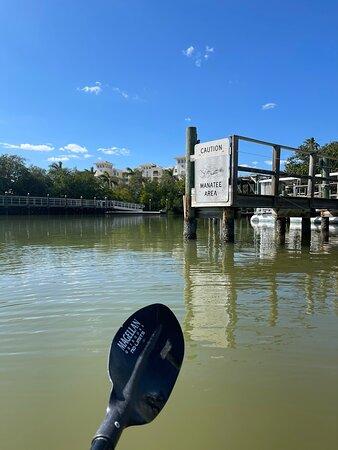Fun kayak trip