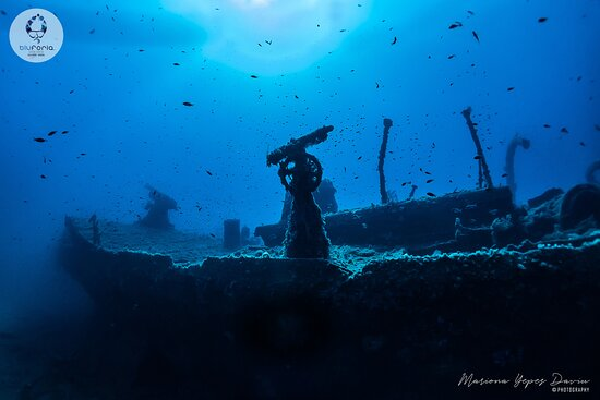 Bluforia Diving Center