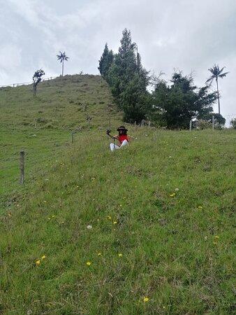 Finca de Luis Abril - Mirador Valle de la Samaria