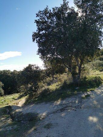 Bonita mañana de ruta de senderismo.