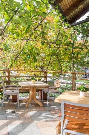 Zerovnica, Slowenien: Teracce in B&B Miskar where the breakfast is served