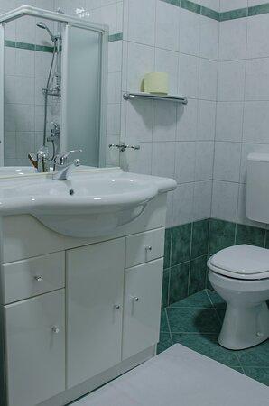 Zerovnica, Slowenien: Bathroom in one of the room in B&B Miskar