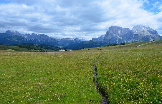 Alpe di Siusi, Italy: panorama sull'alpe