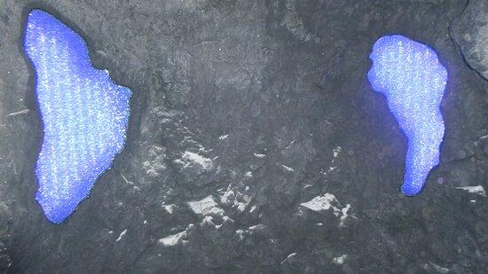 Swarovski Crystal Worlds Admission Ticket in Wattens: Swarovski Kristallwelten