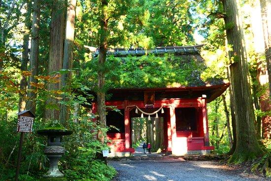 戸隠神社 奥社参道の中間地点にある随神門。周辺の景色の中でもひと際目立つ朱色の巨大な門です。