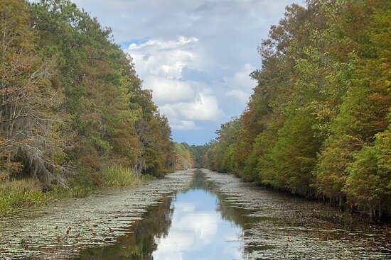 Lake Moultrie Kayak Tours and Rentals