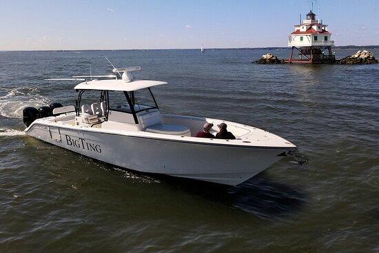 Croisière privée d'une journée en bateau à moteur dans le triangle de...