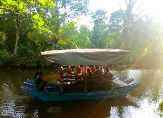 Ahangama River Safari