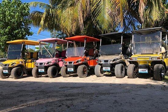 One love golf cart rentals