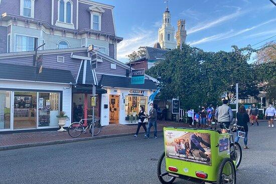 Tour privato all'aperto in pedicab a Provincetown