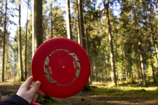 You should take your own discs with you our rent them in Aluksnet Tourism information center