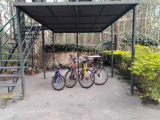 Best resort for outdoor activities