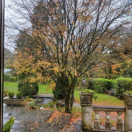 Treglyn Garden and Woodland