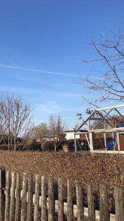 Grüne Aue Glauchau e.V. je pekná komunitná záhrada