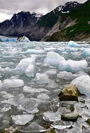 Glacier Bay National Park and Preserve, AK: Glacier Bay 23