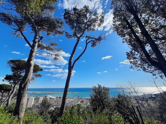 Sin colas: entrada a Villa Durazzo Pallavicini: vista su Genova