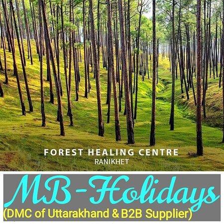 *Ranikhet Tour Package with Corbett National Park* from Delhi Airport @ *https://www.mb-holidays.com/* _(DMC of Uttarakhand & B2B Supplier)_