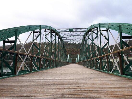 Puente de Vicedo