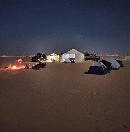 Oasis Western Desert