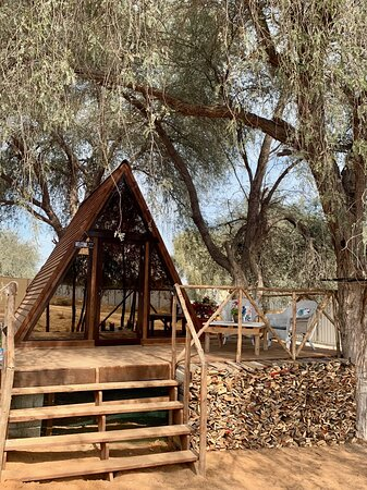 Our popular A-Frame Wood Cabin under the Gaff Trees
