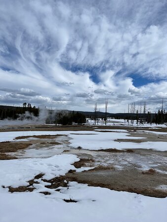 Old Faithful Tour with infant to 84y/o!