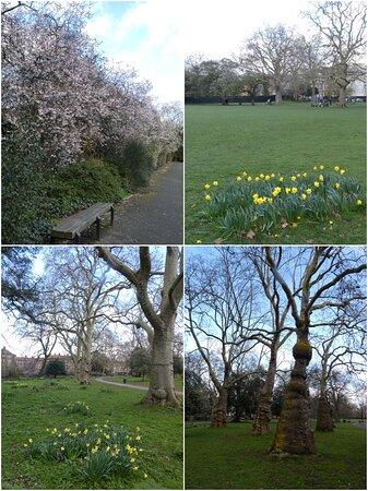 Kennington Park, South London: views of the park