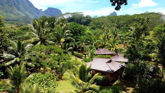 Village Temanoha, hôtels à Moorea
