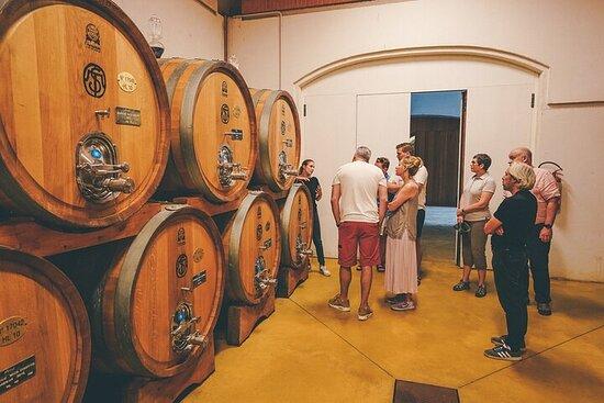 Half-Day Valpolicella and Amarone Wine Tour from Lake Garda