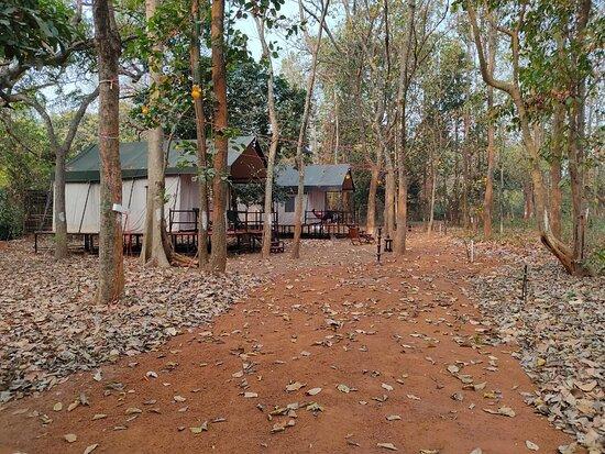 Array of tents
