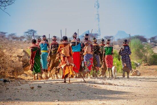 Samburu National Reserve, Kenya: Magical Kenya! www.msaniiafricasafaris.com
