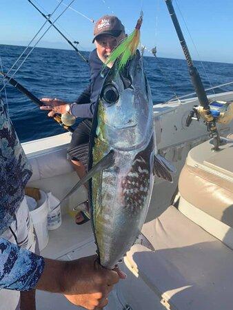 Fresh Blackfin Tuna for lunch!