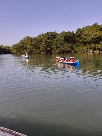 Covenas, Kolumbien: Ciénaga la Caimanera