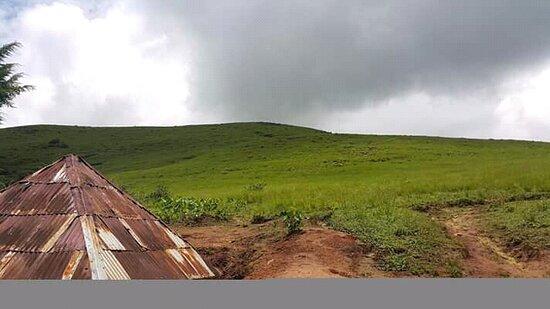 Taraba State, Nigeria: Scenic view of a spot on the Mambilla Plateau