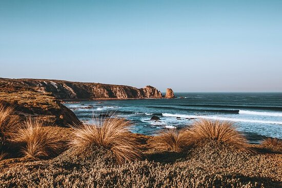 Private Phillip Island & Penguin Parade Hiking Tour from Melbourne