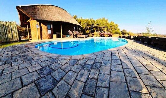 Bush Safaris - Foto Buffelsdrift Game Lodge, Oudtshoorn - Tripadvisor