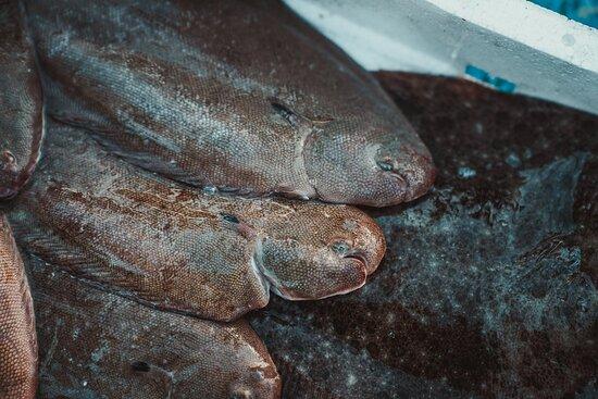 pescato nostrano