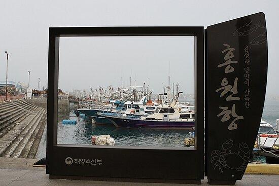 홍원항전경