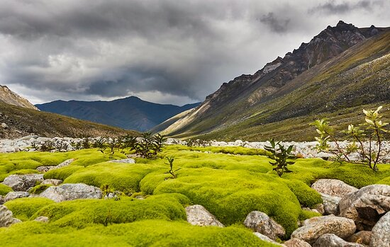 Gates Of The Arctic National Park and Preserve, AK: Gates of the Arctic 8