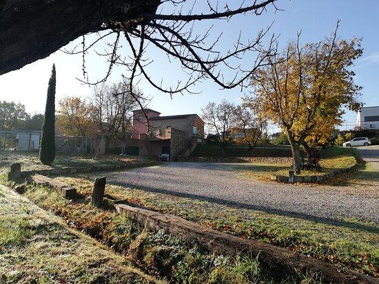 Abbadia di Montepulciano, إيطاليا: La cantina...