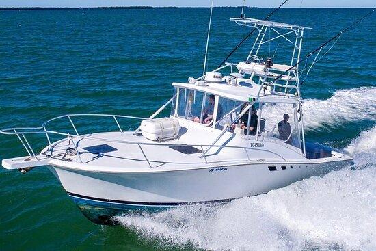 Reel Runner Gulf Adventures-Fishing Charters Options