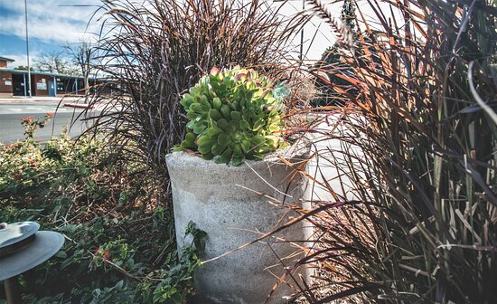 Pomona, CA: Remnant of original well used as a planter