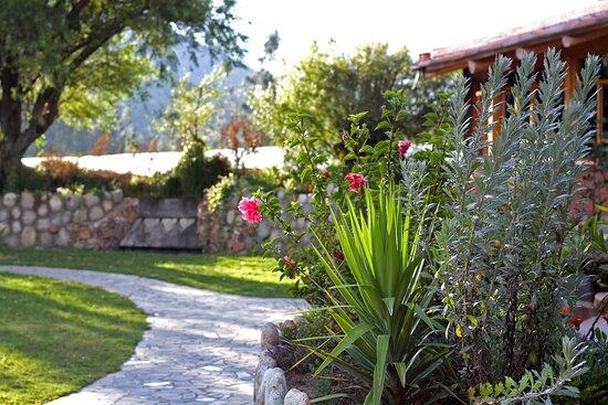 Habitación Aukin - Picture of Fleur Lodge, Acopampa - Tripadvisor